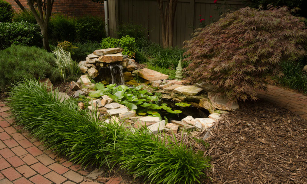 Jean Wilder has a master's degree in landscape architecture from Clemson  University. - Jean Wilder - Landscape Designer In The Greenville, SC Area